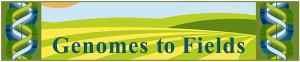 genomes-2-fields-logo